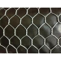 China Hot dipped hexagonal wire mesh, hexagonal wire mesh supplier on sale
