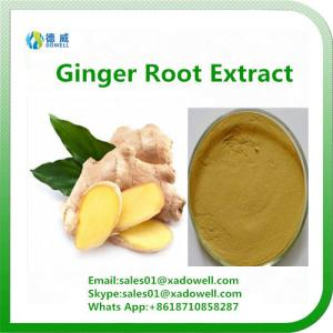 China Natural High Quality Ginger Root Extract Plant extract on sale