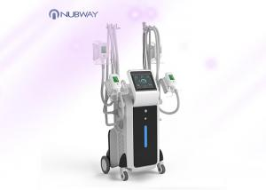 China Cool sculption fat freeze slimming machine weight loss body slimming cryolipolysis machine on sale