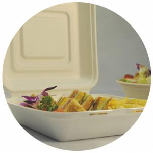 China BIO-DEGRADABLE BAGASSE CLAMSHELL, FIRM AND PRETTY, DOUBLE LOCK DESIGN, WITH LID/COVER, LUNCH BOX on sale