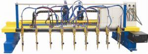 China CNC Multi-head Strip Cutting Machine on sale