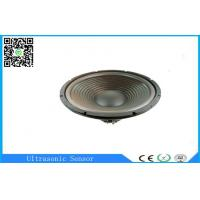 High Power 120 Watt 6.5ohm Car Subwoofer Speakers 304mm Professional