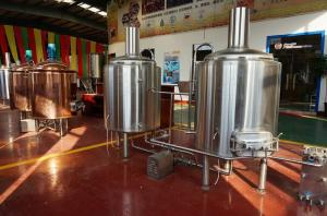 China Automated Beer Brewing System Micro Beer Equipment Stainless Steel 304 on sale