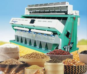 China walnuts color sorter, walnuts processing machine, walnuts production machine on sale