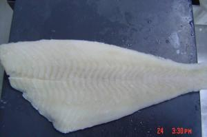 China frozen yellow fin sole fillet on sale