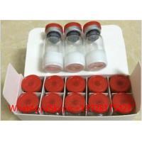 Fat Burning Peptides Polypeptide Hormones Selank 5mg/Vial USP Standard