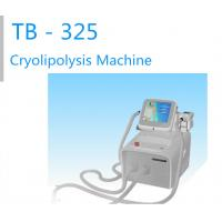 China Portable -15-5℃ Two Handles Working Treatment Cryolipolysis  Slimming Machine For Body slimming / Body Shaping on sale