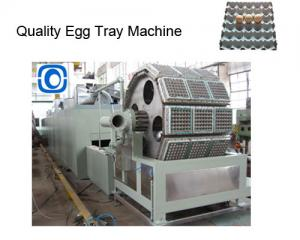 China high quality egg tray machine,top quality egg tray production line on sale