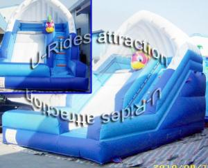 China Backyard Water Inflatable Slide on sale