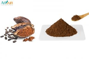 China Natural Food Additive with Pure Taste and Rich Aroma-Cocoa Powder on sale