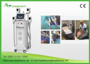 China 2017 innovative product fat freezing body weight loss machine for spa and salons on sale