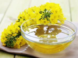 China High Quality Rapeseed Oil of Competitive Price on Sale on sale
