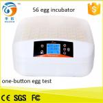 China Top selling newly design full automatic mini egg incubator hatching 56 eggs for sale HT-56S wholesale