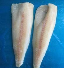 China frozen Alaska pollock fillet on sale