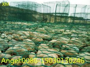 China Cheap Price Galvanized Gabion Boxes Wire Mesh/Gabion Mattress / Gabion on sale
