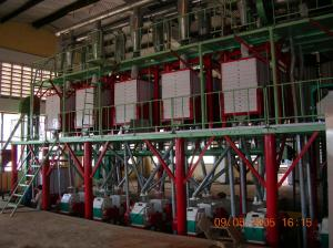 China 100 T/24h High Gluten Maize Flour Milling Machinery, High Fineness Flour Milling, flour milling production line on sale