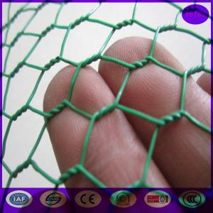 China Green Carbon Steel Chicken Wire Mesh Fencing Electric Poultrynetting from China on sale