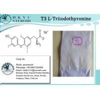China Healthy Effective Raw Hormone White Powder L-Triiodothyronine T3 For Weight Loss on sale