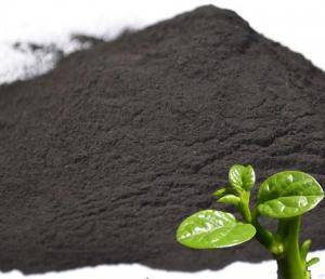 China Humic Acid Powder on sale