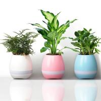 Speaker Mini Home Smart Plant Toy light music Smart Touch Plant Piano Music Playin With  from grgheadsets.aliexpress.com