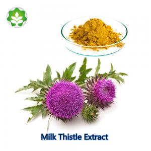 China wholesale milk thistle silymarin marian powder for live cancer on sale