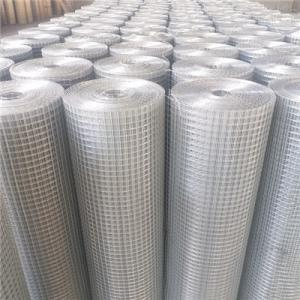 China High Quality Hot-dip Galvanized Welded Wire Mesh on sale