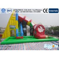 Giant Inflatable Water Slide Swimming Pool Combo Games For Children and Adults