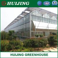 China Commercial hydroponics venlo glass greenhouse with climate control system on sale