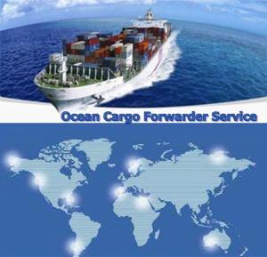 China SHENZHEN Logistics global freight forwarder HONGKONG NINGBO SHANGHAI logistics forwarder on sale