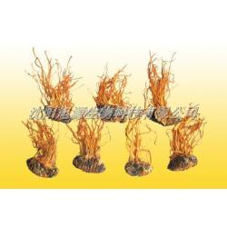 China Cordyceps Liquid training base Bacteria a treasure (Cordyceps) fruiting bodies on sale