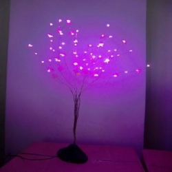 China LED string LED copper string light LED mini base tree light on sale