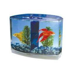 Betta Fish Bowl Betta Fish Bowl Manufacturers And