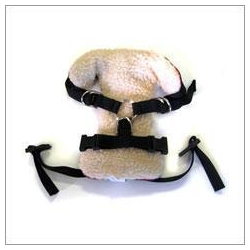 China Solvit Vehicle Dog Safety Harness on sale