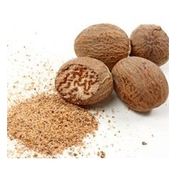 China Nutmeg Oleoresin Nutmeg Oleoresin on sale