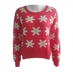 China Ladies Crew Neck Sweater on sale