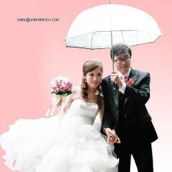 China promotion umbrellas princess umbrella on sale