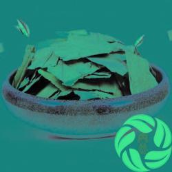 China Premium Chinese herb wholesale herbal medicines for weight loss tea lotus leaf tea herbal tea on sale