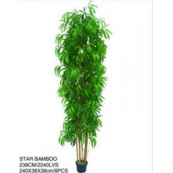 China Bamboo Trees on sale
