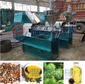 China Castor bean oil press machine supplier