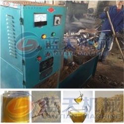 China Rice bran oil press machine on sale