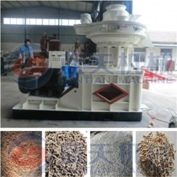 China Rice husk pellet mill machine on sale