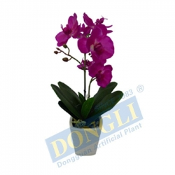China Fake House Plant Plastic Silk Orchid 10LVS 6F 1B 12FTS W/P Withstanding Strong Wind 12904 on sale