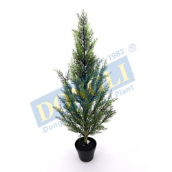 China Plastic\ Nature Trunk Realistic Cypress Tree Pot Plant Good for Office Using 506LVS W/P 19775 on sale