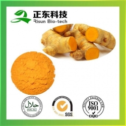 China Factory Supply Natural Chinese Plant Extract Curcumin 95% on sale