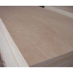 China aukis-04 Melamine/Commercial/Film Faced Plywood exporter price on sale