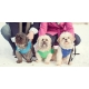 China Top 35 Winter Clothes for Dogs on sale