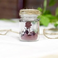 China Personalised Mini Engraved Rose In A Jar on sale