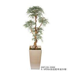 China Mini Ficus NO.:09P128-2000 on sale