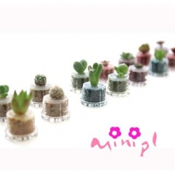 China Minipl / Mini Plant / PET Tree / PET Plant / Promotional Gifts / Mobile Phone Accessories / Keychains on sale
