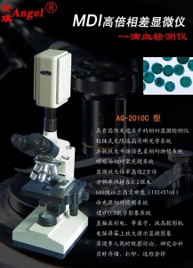 China Multi-function High-power Phase Microscope on sale